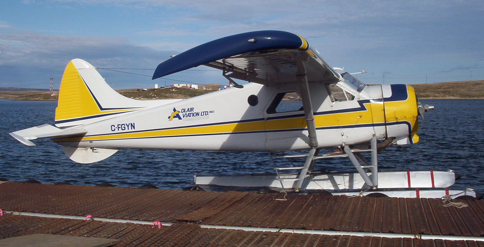 Image of DHC-2 Beaver