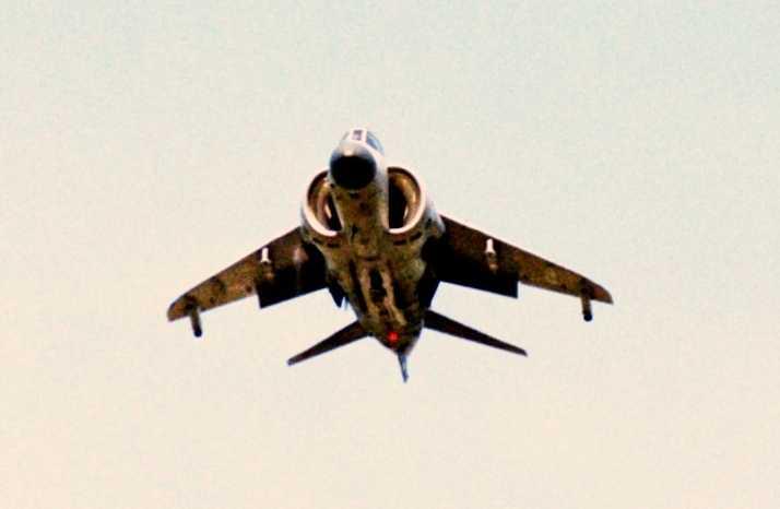 Image of BAe Sea Harrier FRS.1